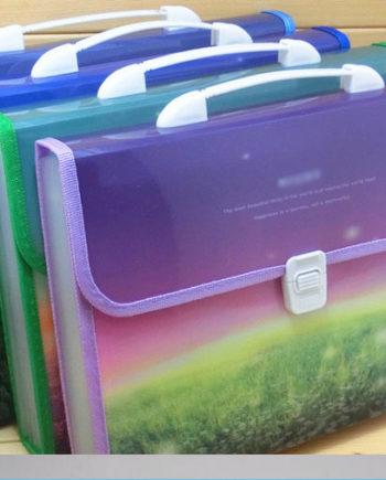 Document Bag, Holder, Case, Box File